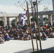 Outdoor Assembly
